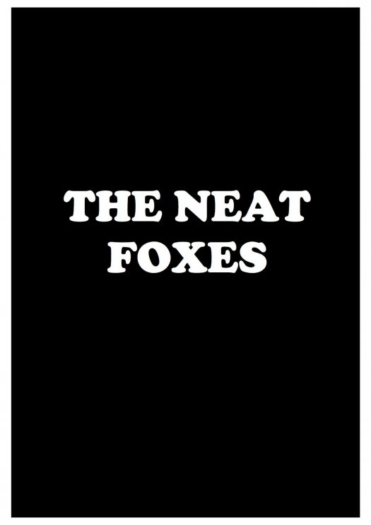 Concert : The neat foxes